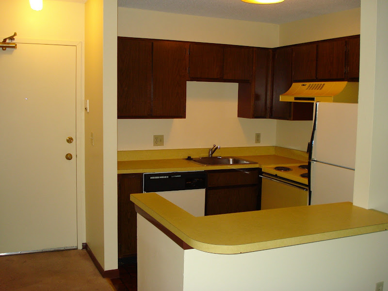 the kitchen is sooo small & ugly! & the L-shaped counter/bar is small  title=