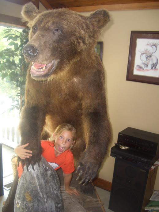 BEAR and Lex!