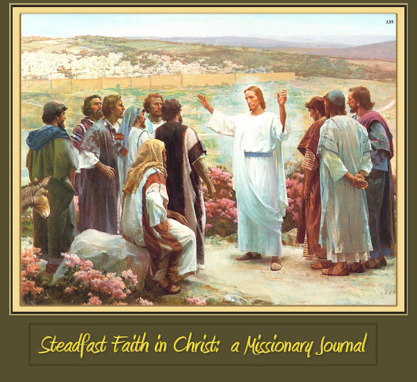 Steadfast Faith in Christ: A Missionary Journal