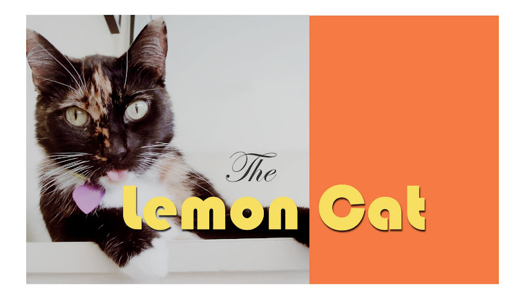 The Lemon Cat