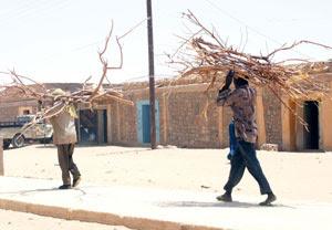 Immigrati africani a Tamanrasset trasportano fascine di legna sulla testa