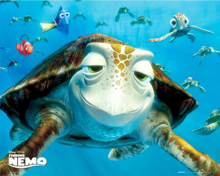 the turtle from finding nemo