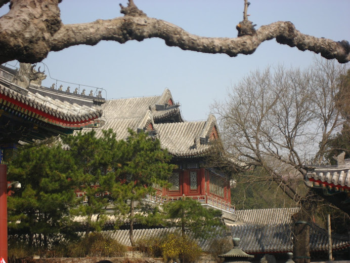 ~ Scenery Inside Summer Palace ~