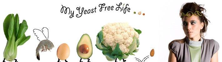 My Yeast Free Life