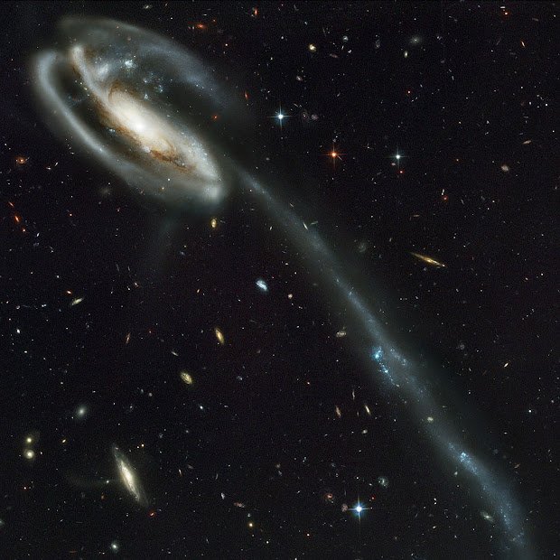 The long tail of Stars of UGC 10214 as pictured by Hubble!