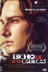 Baixar Filme Bicho de Sete Cabeças (Nacional)