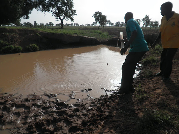 Treating Ponds for Guinea Worm