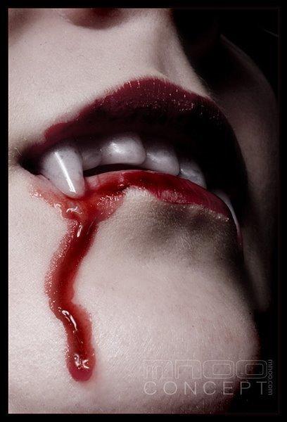 vampiros e morcegos