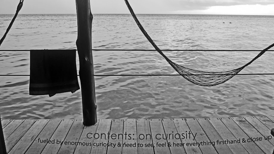 contents : on curiosity