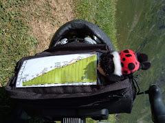 El meu GPS