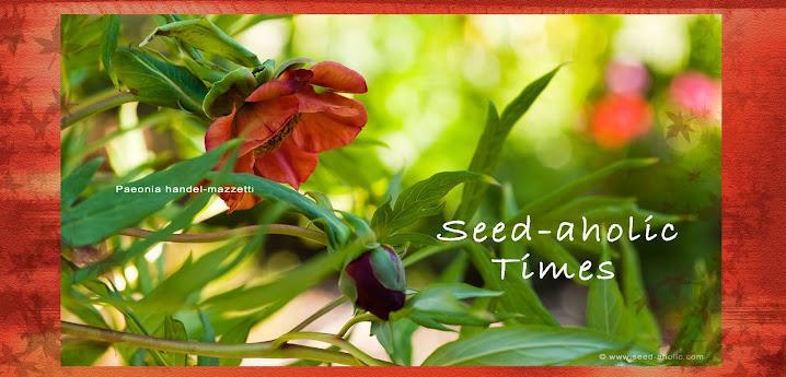 Seed-a-holic Times