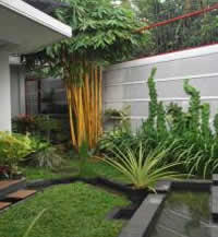 Desain Kebun Rumah Minimalis on Email This Blogthis  Share To Twitter Share To Facebook