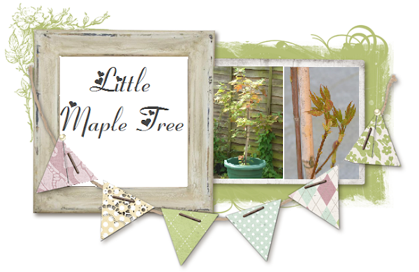 Little Maple Tree
