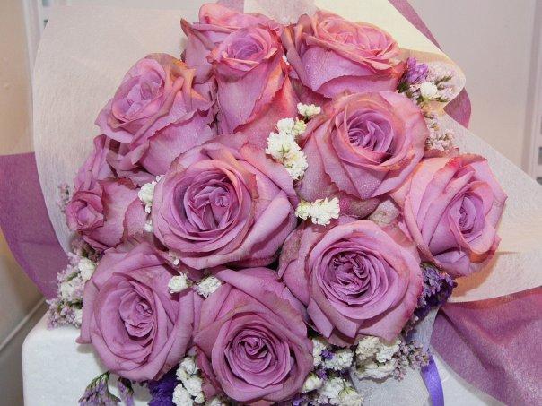 12 Yam Roses