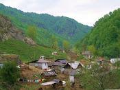 Romanian Gypsy Village