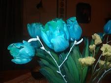 Blå tulipaner