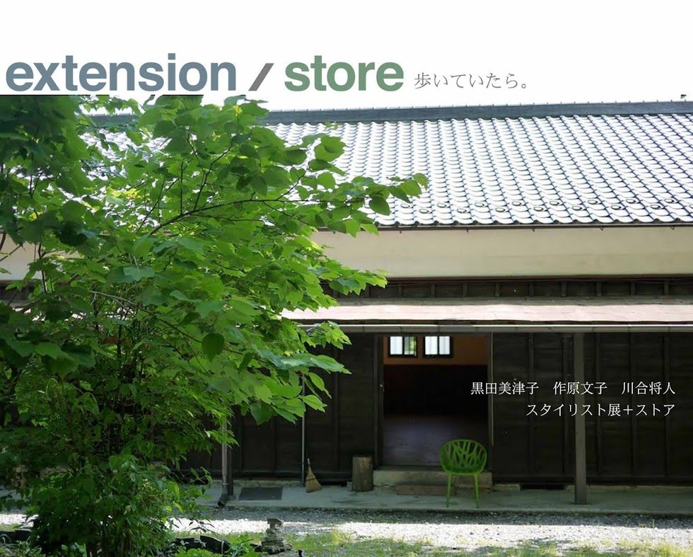 extension/store 歩いていたら。
