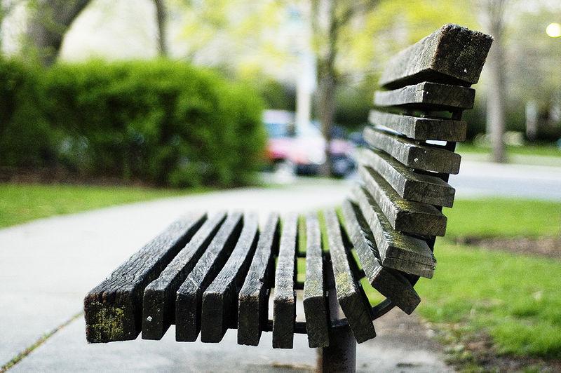 [park+bench]