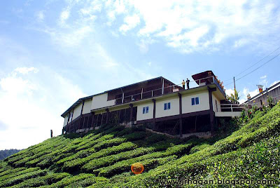 Tea Shop, Bharat Cameron Highlands
