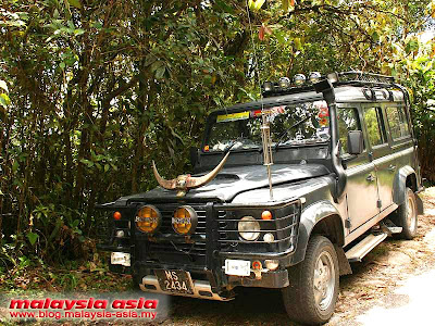 4WD Cameron Highlands