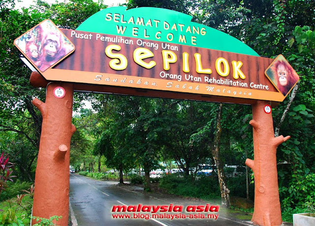 Sepilok Orangutan Sanctuary in Sandakan Sabah