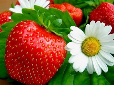 nature_photography_wallpaper_Fruit_strawberyWallpapers (32).jpg