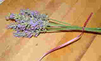 Make a Lavender Wand 2
