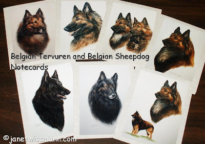 and belgian sheepdog belgian tervuren belgian sheepdog note cards