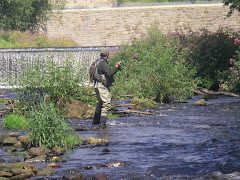 Stuart Croft Urban Fishing in Sheffield