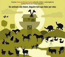 OS ANIMAIS FORAM CRIADOS PARA ENCANTAR A NOSSA VIDA!