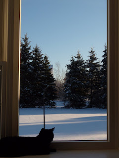 shadow in bay window with snow