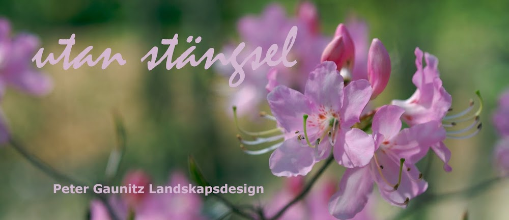 utan stngsel - Peter Gaunitz Landskapsdesign