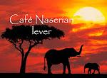 Café Naserian
