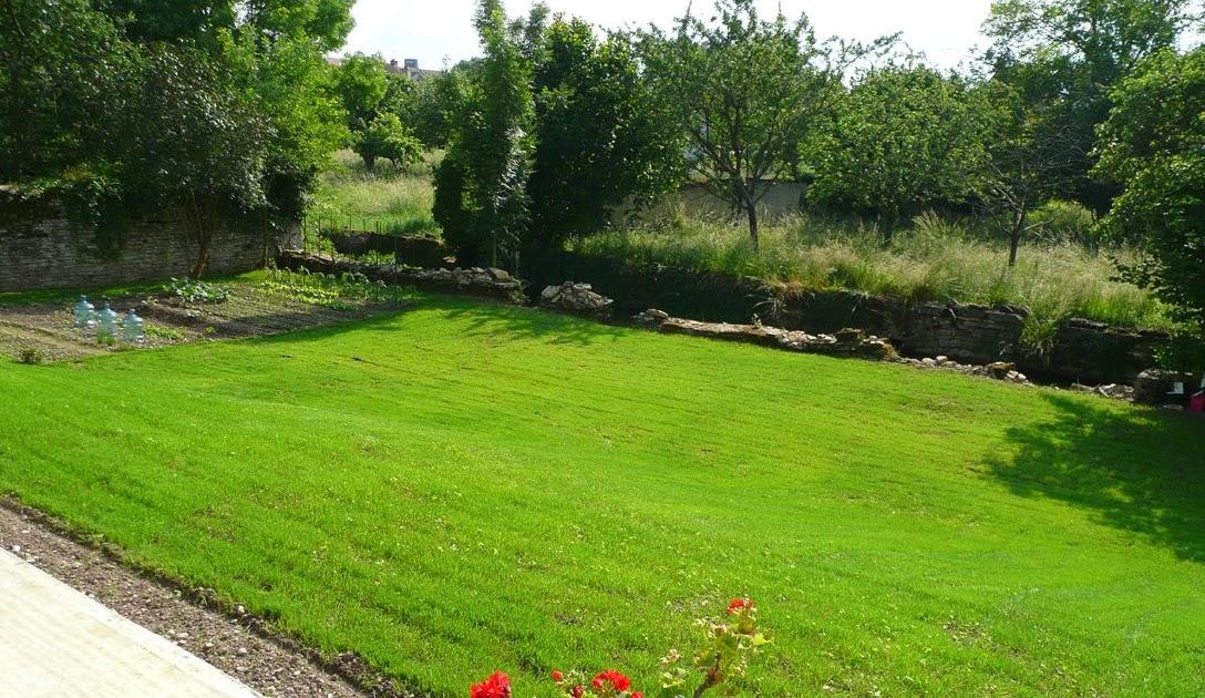 Notre jardin secret premi re tonte for Tonte jardin