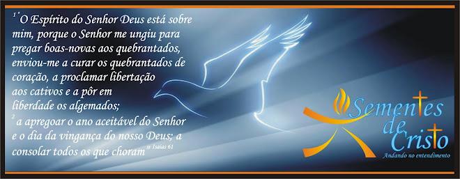 Sementes de Cristo.Luz