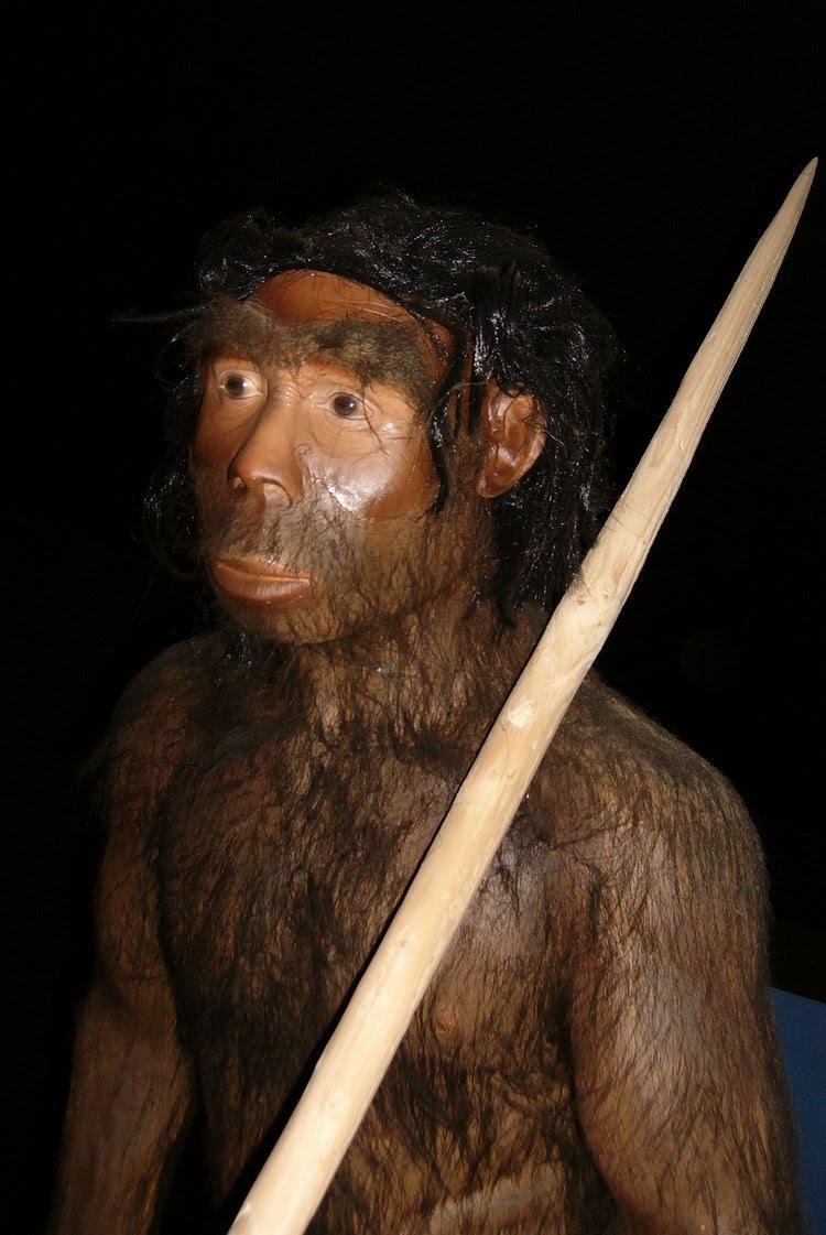 Sejarah Perkembangan Manusia Purba Di Dunia