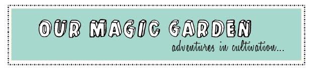 our magic garden