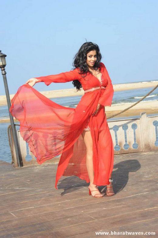Desi Hot Hot Images: Shreya Saran Hot Photos