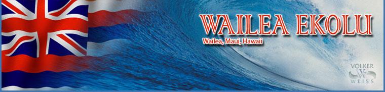 Wailea Ekolu - Condos - Wailea, Hawaii