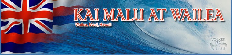 Kai Malu at Wailea - Condos - Wailea, Hawaii