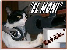 Mundo Felino...