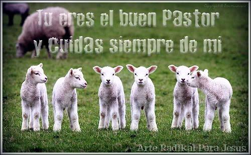jesús es el pastor que vive jesús es el camino por el que tenemos