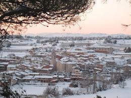 Cabra del Camp: nevada 2010