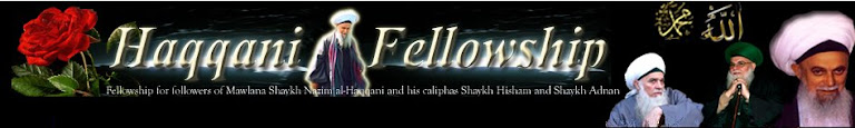 Haqqani Fellowship Suhbats