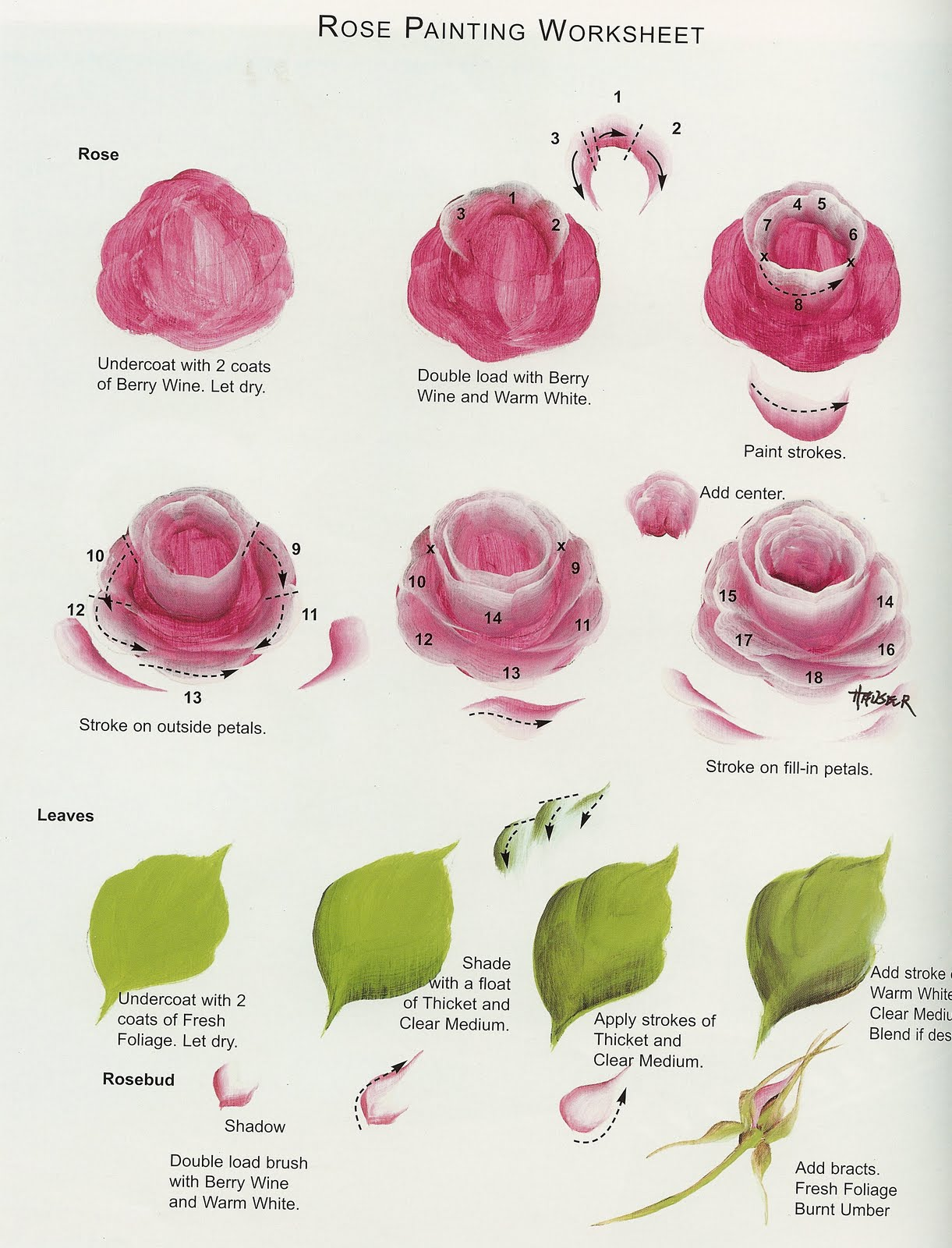 Steps painting roses 1221 1600 one stroke for How to paint a rose in watercolor step by step