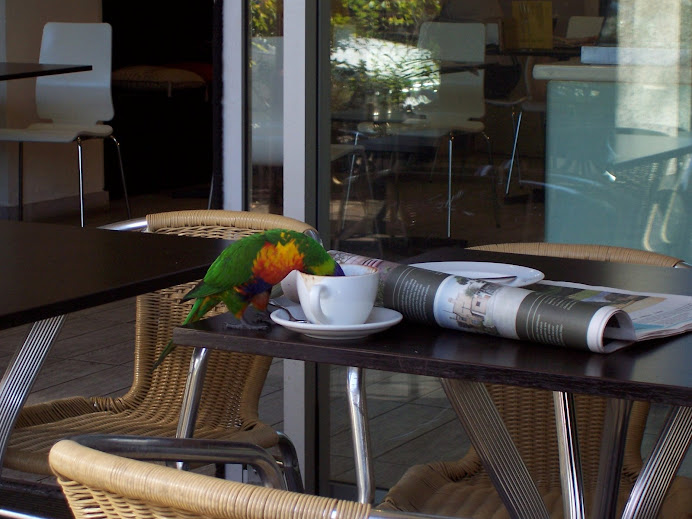 We weren't the only ones desperate for coffee