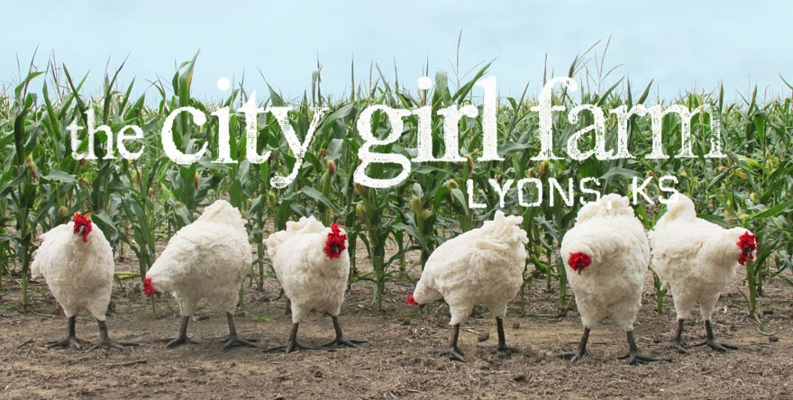 the City Girl Farm
