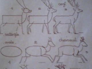 Dessins astuces pour debutants dessiner un cerfs - Comment dessiner un cerf ...