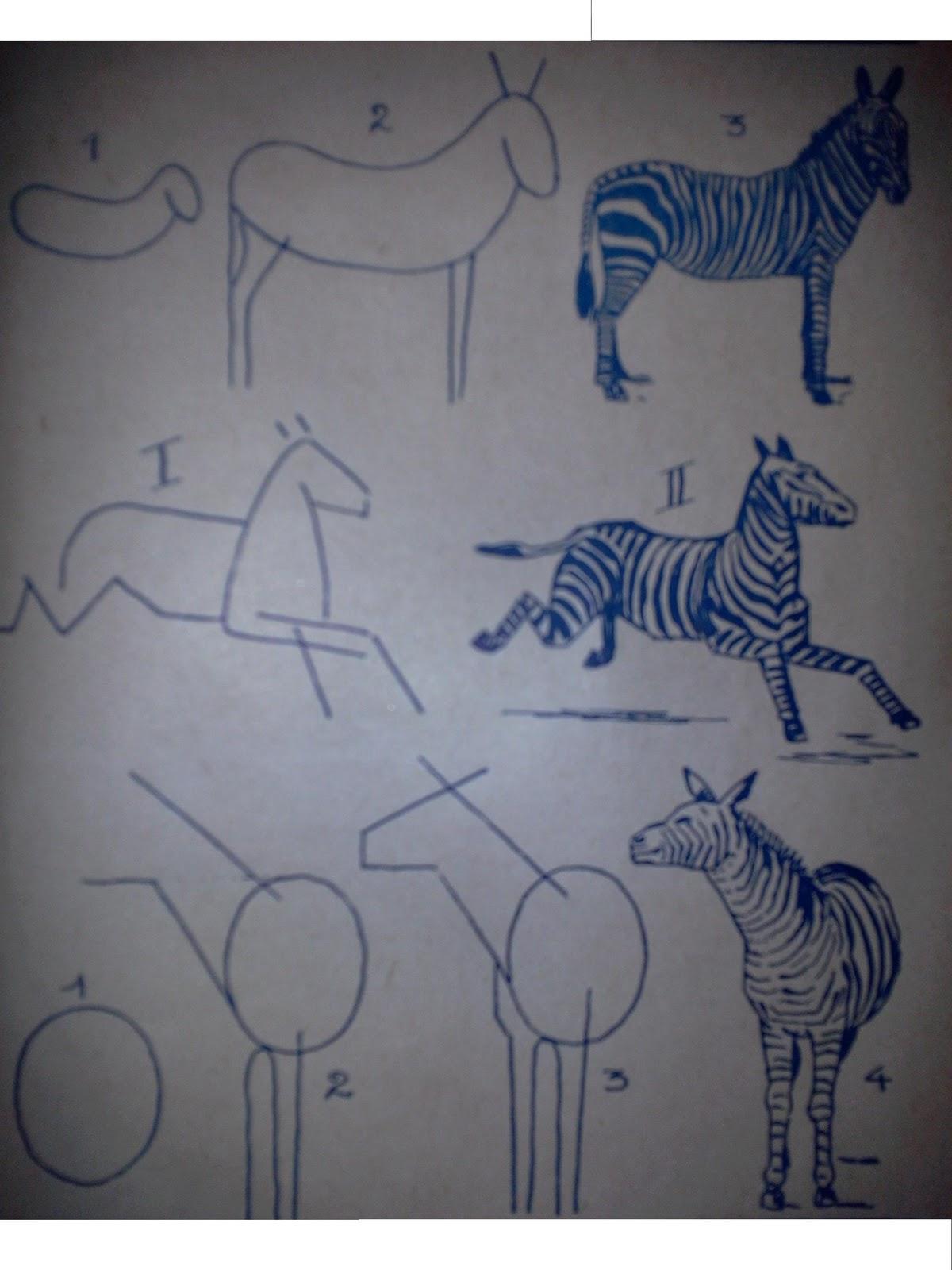 Dessins astuces pour debutants comment dessiner un z bre - Zebre a dessiner ...