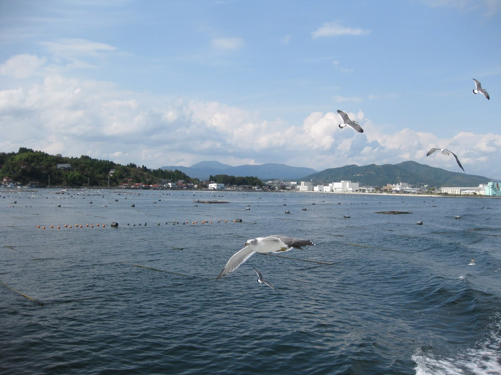 Kurashi - News From Japan: June 2010